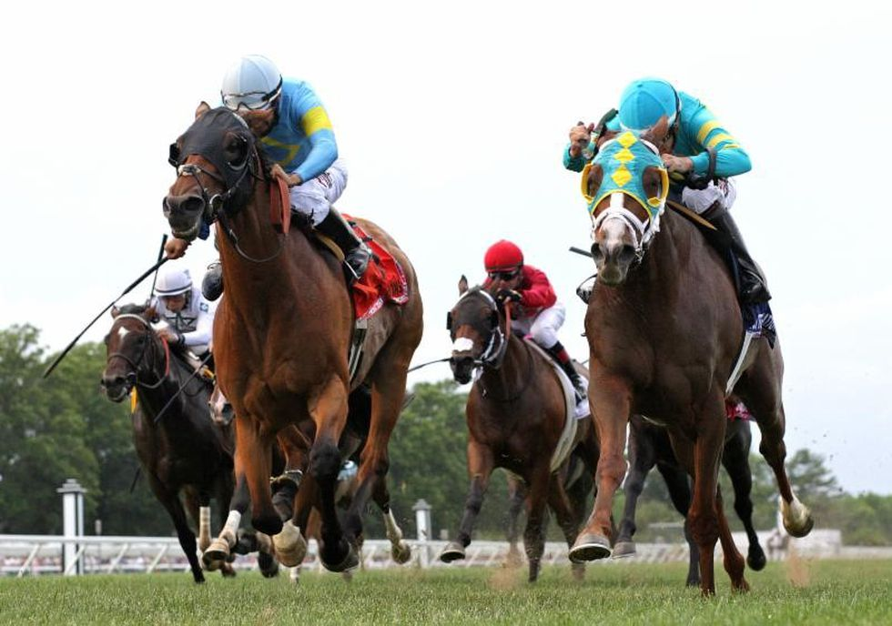 Bigger Picture (right in turquoise blinkers), the favorite for Sunday's Kentucky Downs Preview...