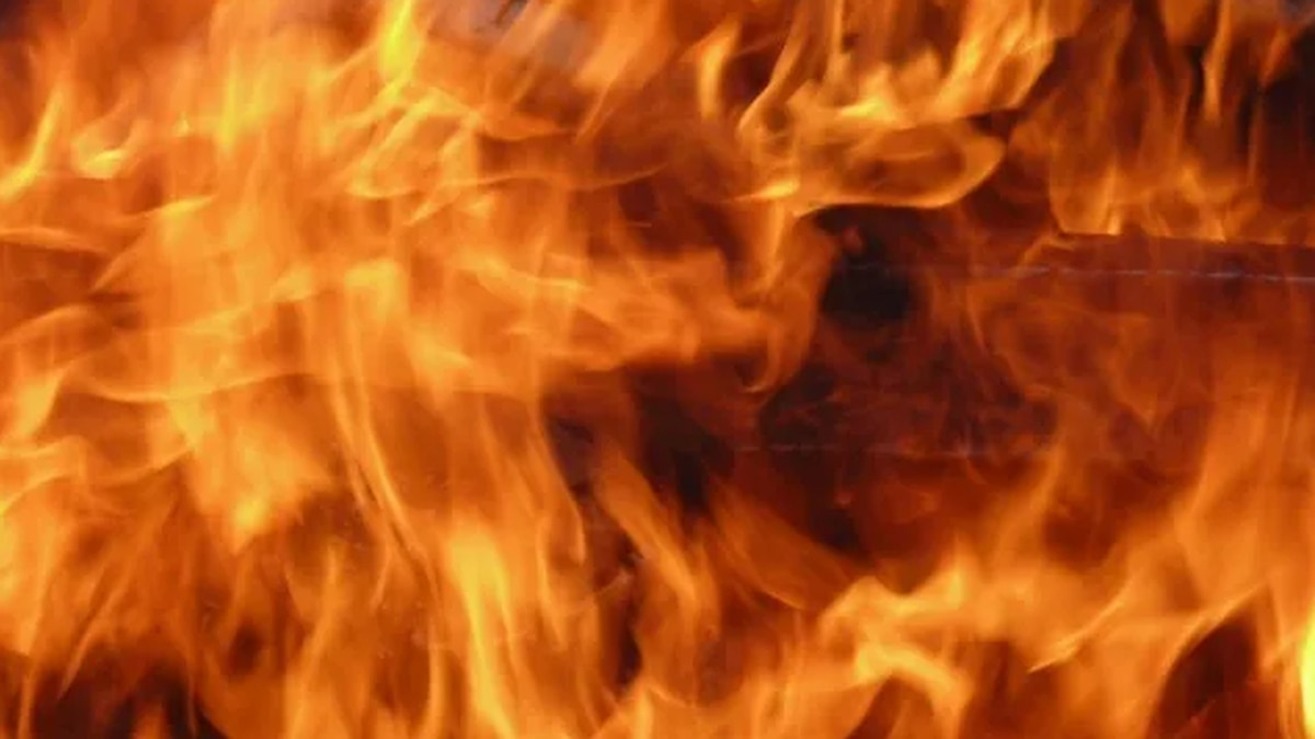 Vanderburgh County Dispatch confirms a working structure fire in progress in McCutchanville on...