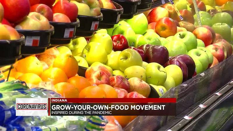Grow-your-own-food movement inspired during pandemic