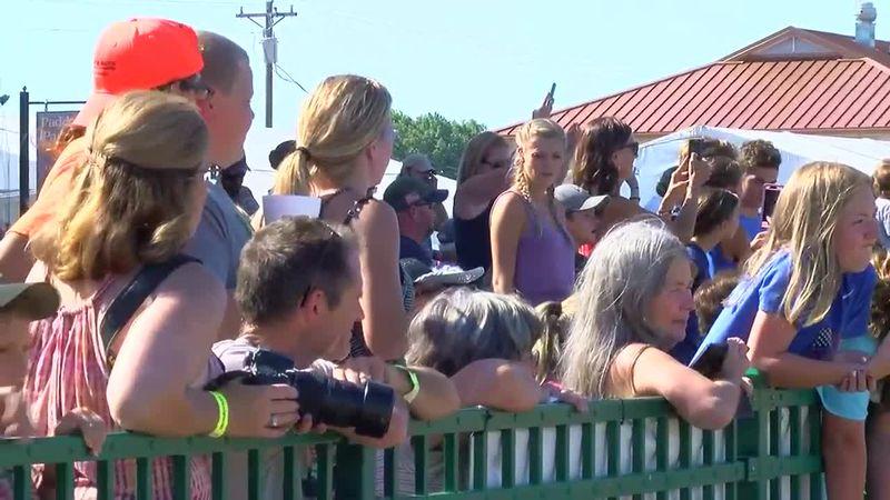 Ellis Park gearing up for summer meet as fans return