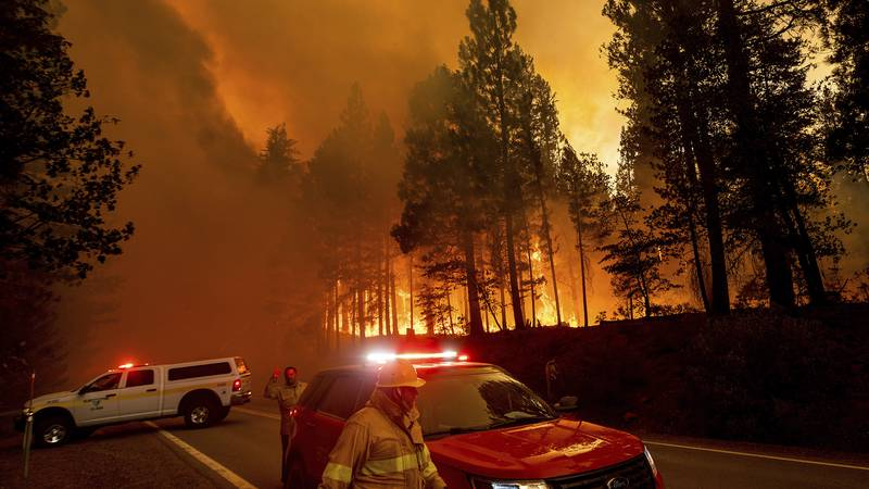 Flames leap from trees as the Dixie Fire jumps Highway 89 north of Greenville in Plumas County,...